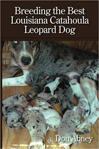 Breeding the Best Louisiana Catahoula Leopard Dog